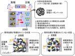 関西ペイントの正極用導電カーボンペースト