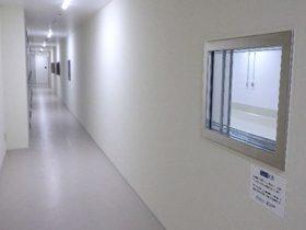 関西ペイント「アレスシックイ」長崎大の感染症実験棟に採用